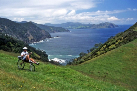 Hiking Biking Adventures-Bicycling New Zealand-Coromandel Peninsula