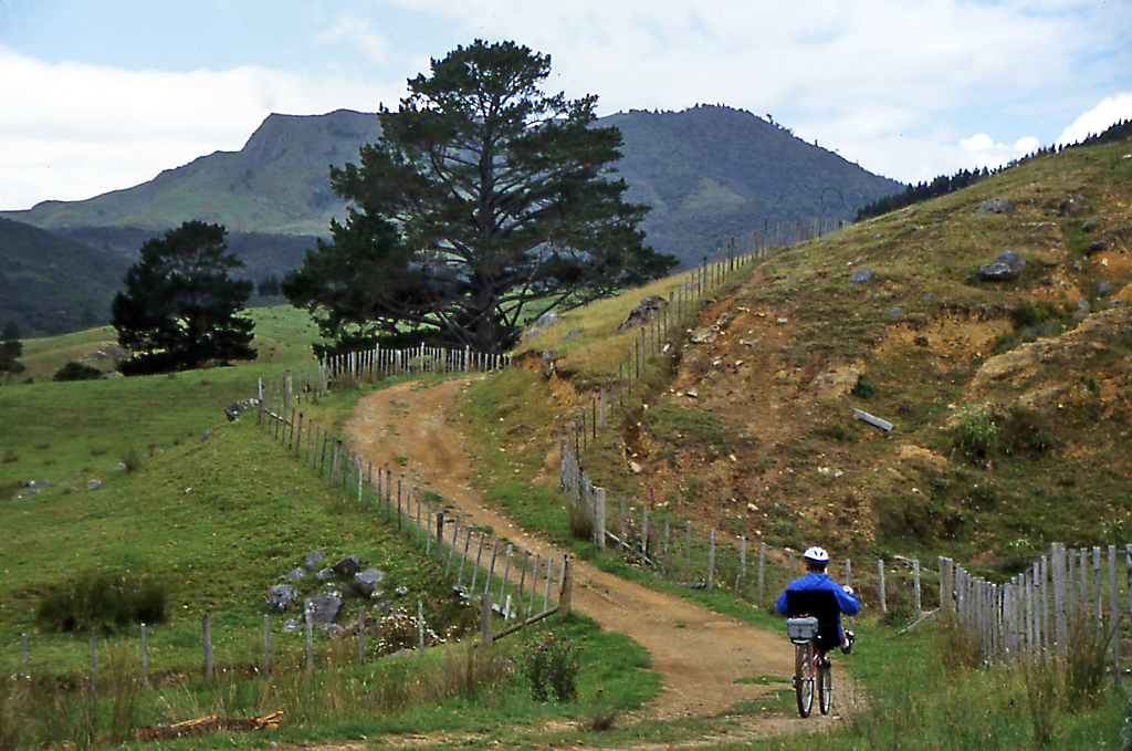 Bicycling North Island New Zealand-Bicycling New Zealand