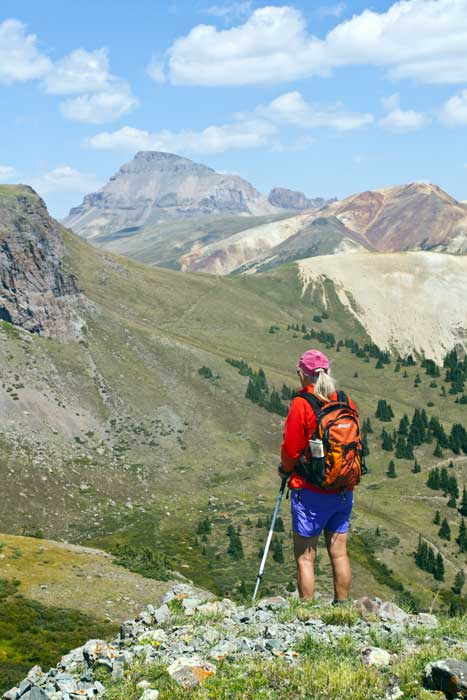 Hiking Biking Adventures-Hiking Lake City-Uncompahgre from above Alice creek