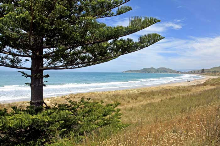 Bicycling North Island New Zealand-Gisborne area beaches