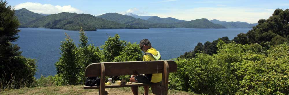 Bicycling South Island New Zealand-Picnic rest stops on Queen Charlotte Drive