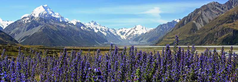 Bicycling South Island New Zealand-Mount Cook from turnoff