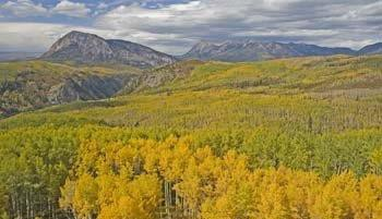 Hiking Colorado-Aspens