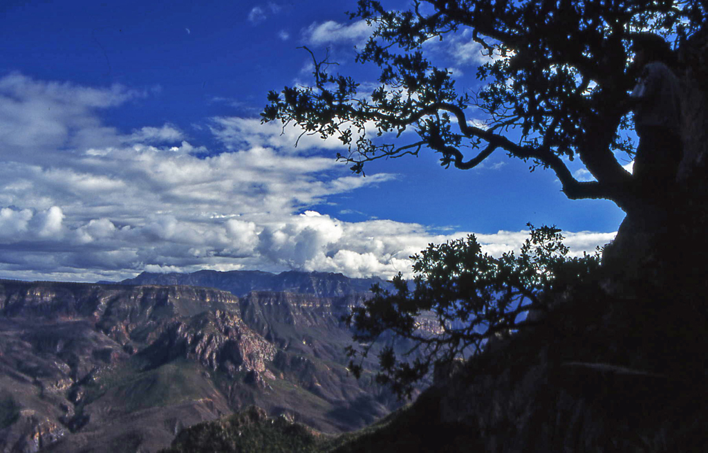 Hiking Copper Canyon-Mexico 1995-Batopilas