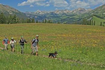 Hiking Crested Butte Colorado-Trail 409