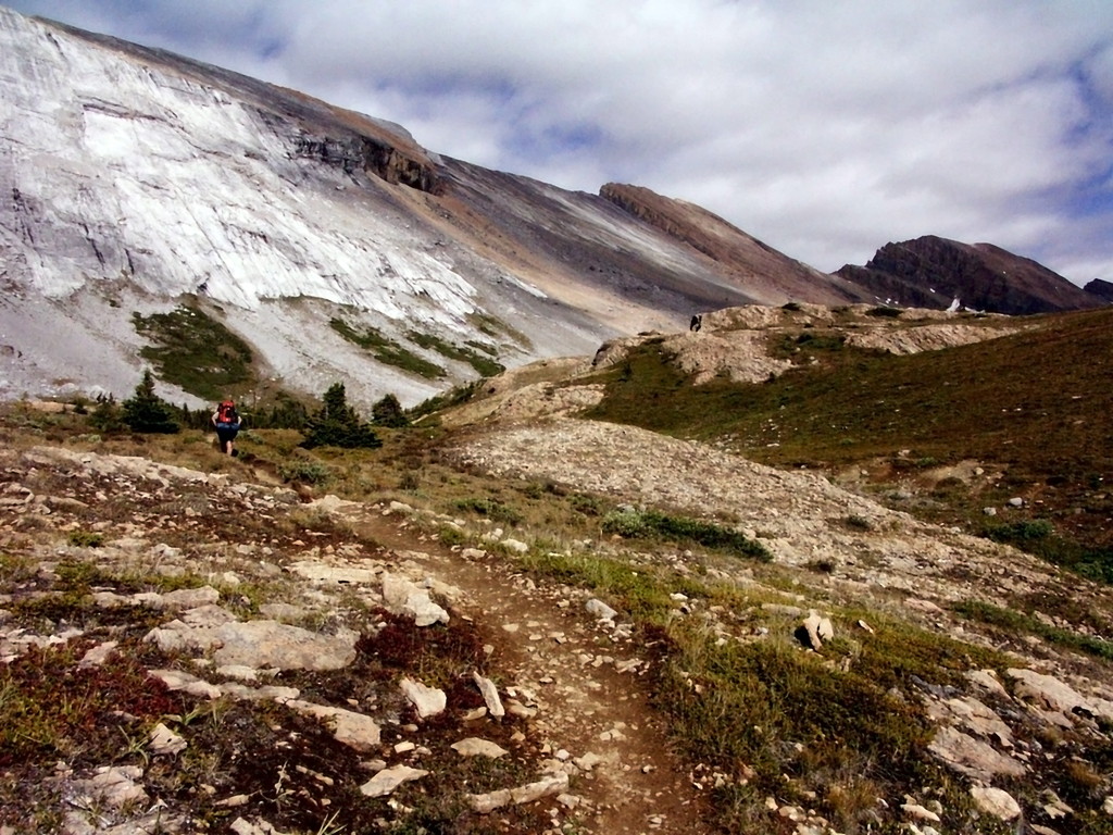 Brazeau Lake Loop-Ascending to Nigel Pass